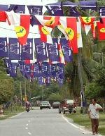 bn-umno-flags-banner.jpg