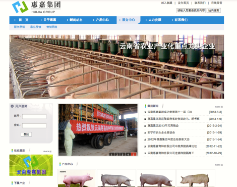Screenshot of Yunnan Huijia Co. Ltd's website
