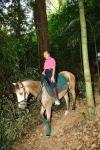 mahathir-horse1